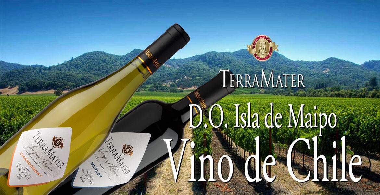 Chilská vína z oblasti Isla de Maipo